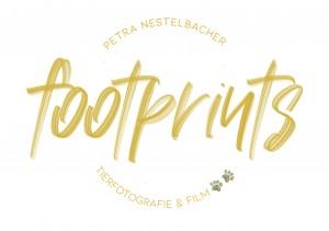 Logo Footprints